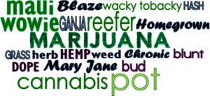 infographic_marijuana_HD